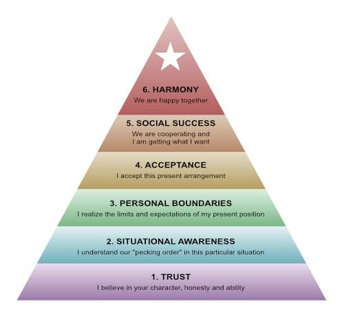 trust in a relationship is the foundation of the Harmony Pyramid