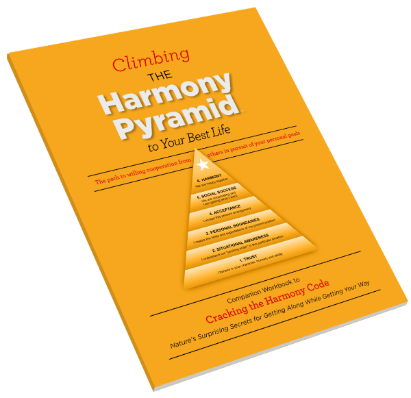 Harmony Pyramid Workbook and Guide to Successful Relationships